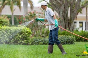 رش المبيدات الحشرية بالخبر